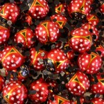 Milk Chocolate Ladybirds x 3