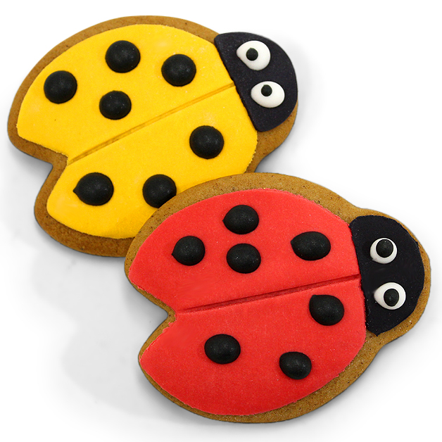Handmade Gingerbread Iced Biscuit - Ladybug