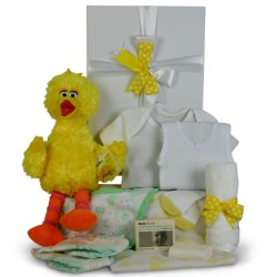 gift-basket-baby-box-big-bird