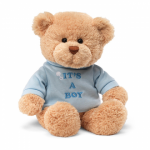Gund Message Teddy Bear - Its a Boy 30cm