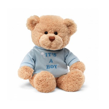 'It's A Boy' Plush Teddy 28cm