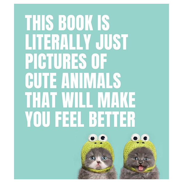 The Book Of Cute Animals
